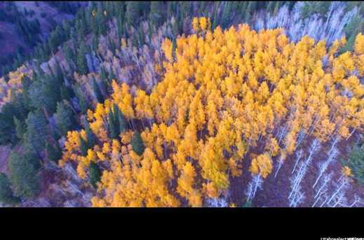 5793 N Powder Mountain Rd E - Photo 5