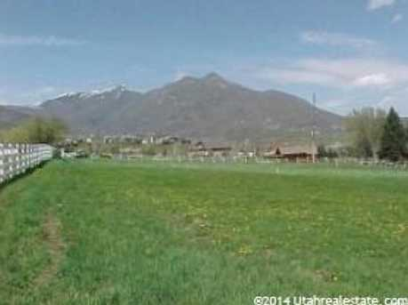 943 W Swiss Alpine Rd N - Photo 11