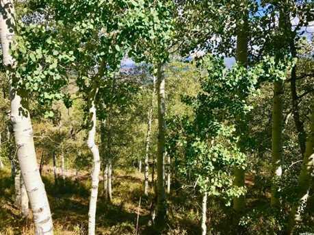 2146 Pine Loop Rd - Photo 15