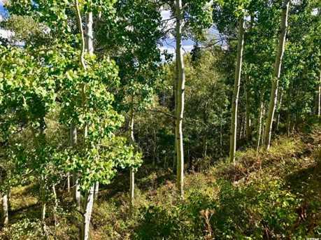 2146 Pine Loop Rd - Photo 21