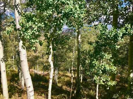 2146 Pine Loop Rd - Photo 13