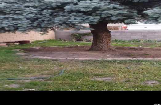 5289 W Postwood  Cir S - Photo 7