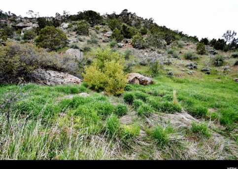 6933 W Dry Fork Canyon Rd - Photo 15