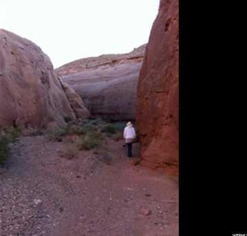 1150 E Dirty Devil Canyon - Photo 7