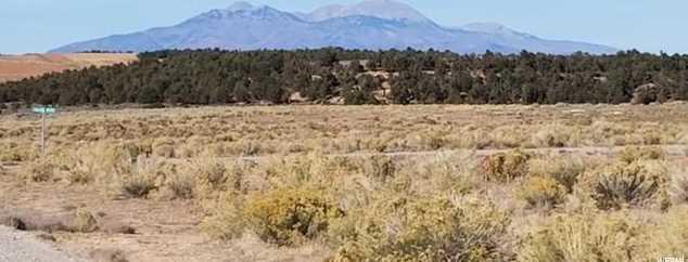 2542 S Elk Ridge - Photo 1
