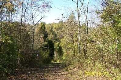 20 Timber Ridge - Photo 1