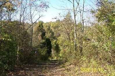 27 Timber Ridge - Photo 1