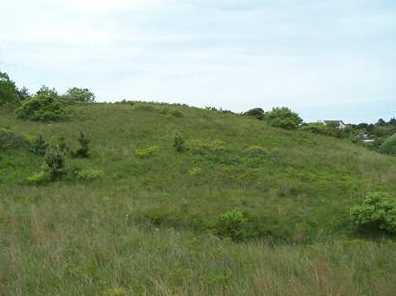 19 Corn Hill Landing - Photo 3