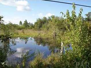 9758 Nichols Lake Rd - Photo 1