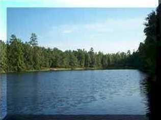00 Pine Lake Circle - Photo 3