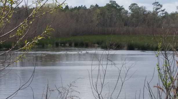 40 Acres Rockaway Creek Rd - Photo 1