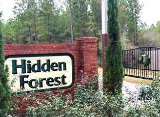 Vacantland Hidden Forest Trail - Photo 1