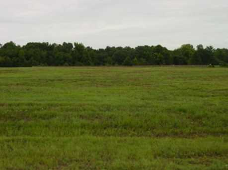 Lot 12 Creekside Hwy 271 Tbd Jacobin Creek Dr - Photo 3