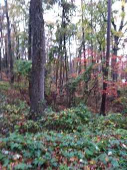 Hickory Hill Land - Photo 9