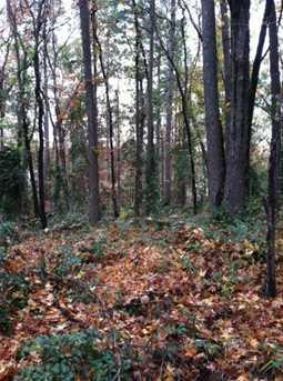 Hickory Hill Land - Photo 3
