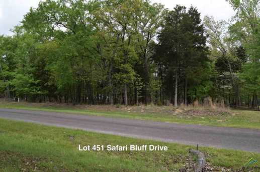 9072 Safari Bluff Dr (Lot 451) - Photo 3