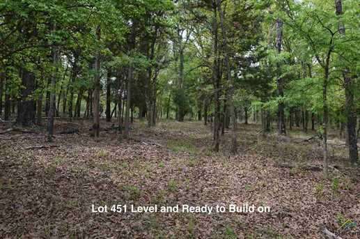 9072 Safari Bluff Dr (Lot 451) - Photo 13