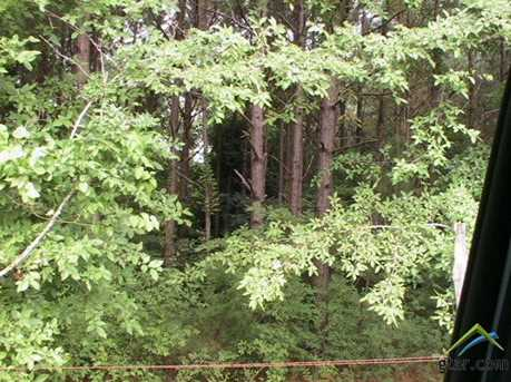 Tba Creek 3805 - Photo 3