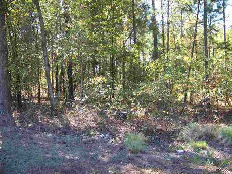 Tract 4 Big Woods Springs - Photo 1