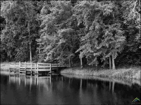 18788 Three Lakes Road - Photo 15