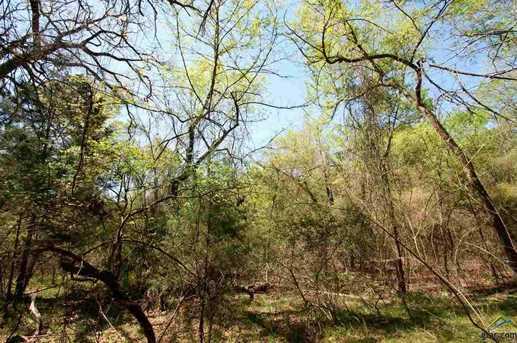 Tract 4 Creek 1307 - Photo 15