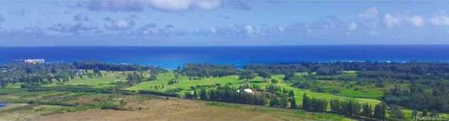 28+acres Above Turtle Bay Kamehameha Highway - Photo 1