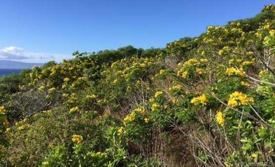8511 Kamehameha V Highway - Photo 9