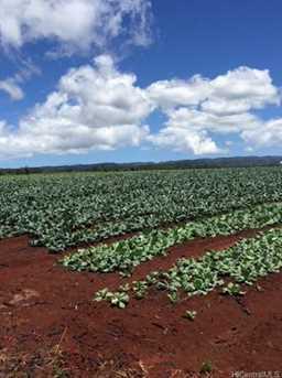 64-1550 Kamehameha Hwy #Kaulana 9 - Photo 9