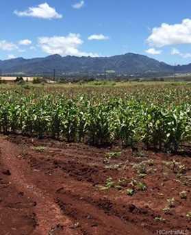 64-1550 Kamehameha Highway #Kaulana 9 - Photo 7