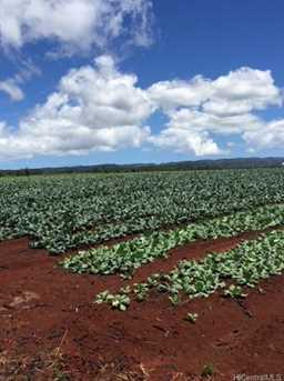 64-1550 Kamehameha Highway #Puuwai 11 - Photo 11