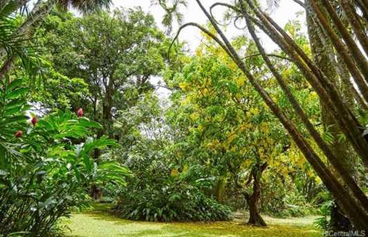 4157 Nuuanu Pali Drive - Photo 7