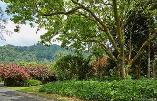 4159 Nuuanu Pali Drive - Photo 11