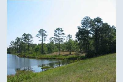 Lot 4 Magnolia Lake Drive - Photo 1