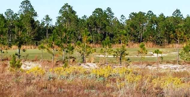 Lot 22 B Brushed Dune Circle - Photo 15