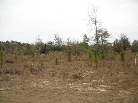 Lot A N Hwy 331 - 5 Acres N - Photo 15