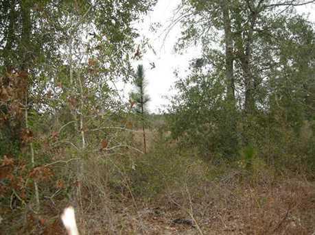 Lot B N Hwy 331 - 5 16 Acres N - Photo 5