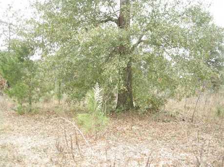 Lot B N Hwy 331 - 5 16 Acres N - Photo 1