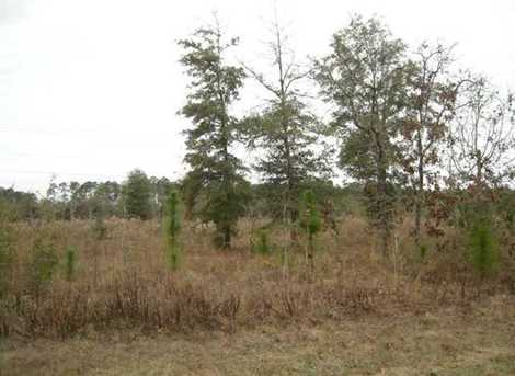 Lot N Hwy 331 - 24 Acres N - Photo 15