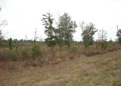 Lot N Hwy 331 - 24 Acres N - Photo 11