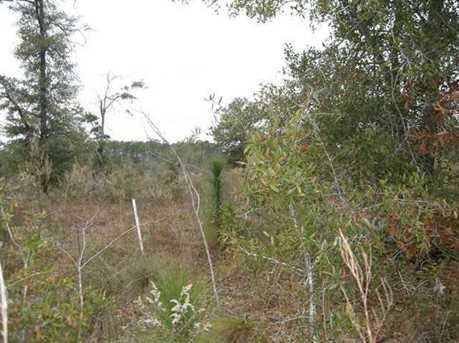 Lot N Hwy 331 - 24 Acres N - Photo 9