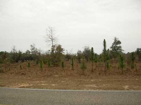 Lot N Hwy 331 - 24 Acres N - Photo 17