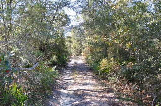 3424 Cedar Creek Chase Drive - Photo 3
