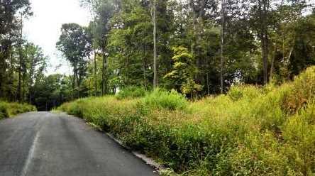 54 Stony Hill Road - Photo 1