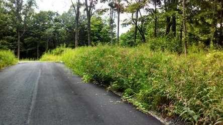 58 Stony Hill Road - Photo 5