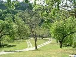 2272 Granada Hills - Photo 17