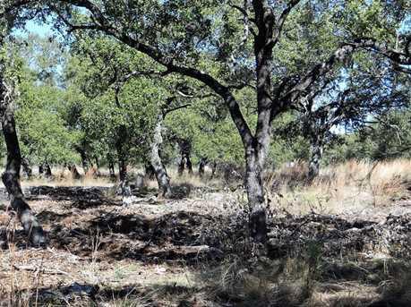 1141 Hidden Forest - Photo 7