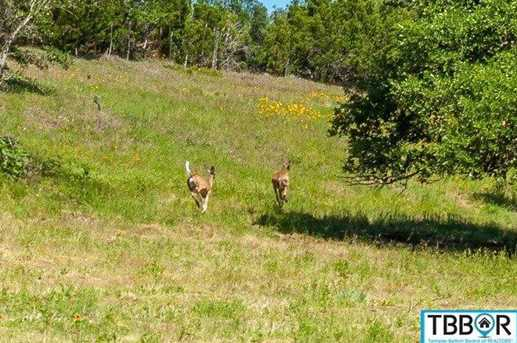 3220 Creek 232 - Photo 19
