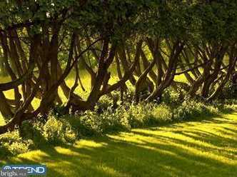 1501 Highgrove Ln - Photo 9