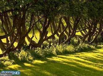 1579 Highgrove Lane - Photo 9