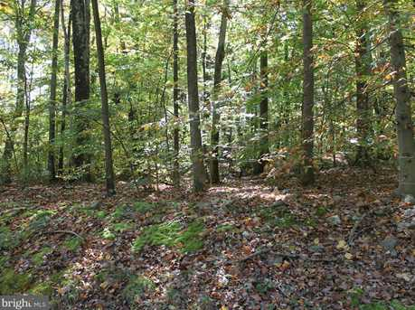 9 Deep Hollow Trail - Photo 5